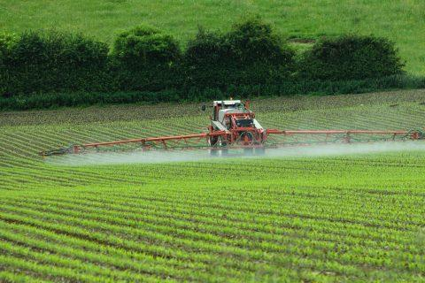 W&L investigating monsanto dicamba