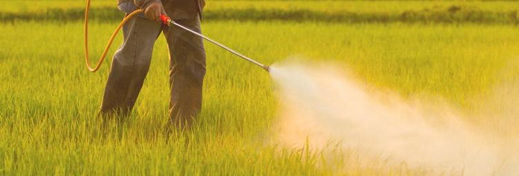 Man spraying pesticide.